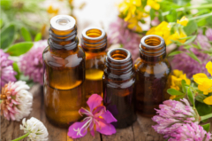 What are Essential Oils? How Are Essential Oils Used?