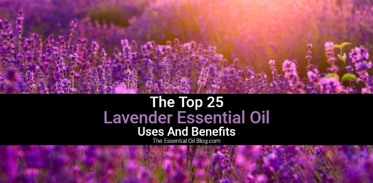 Top 25 Lavender Oil Benefits, Uses And How Lavender Essential Oil Is Made